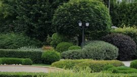 Парк в Жуковке - 14 лет без реконструкции