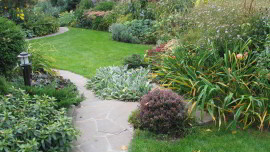 Сад 12 соток. Осень