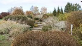 Парк Гринвуд - осень