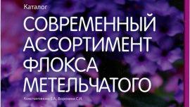 Современный ассортимент флокса метельчатого - выпуск 2