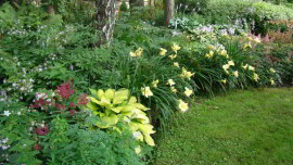 Сад на Николиной Горе