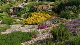 Сад с оврагом