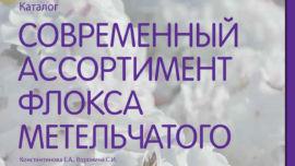 Каталог Современный ассортимент флокса метельчатого